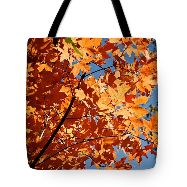 Tote Bag featuring the photograph Fall Colors 2 by Shane Kelly