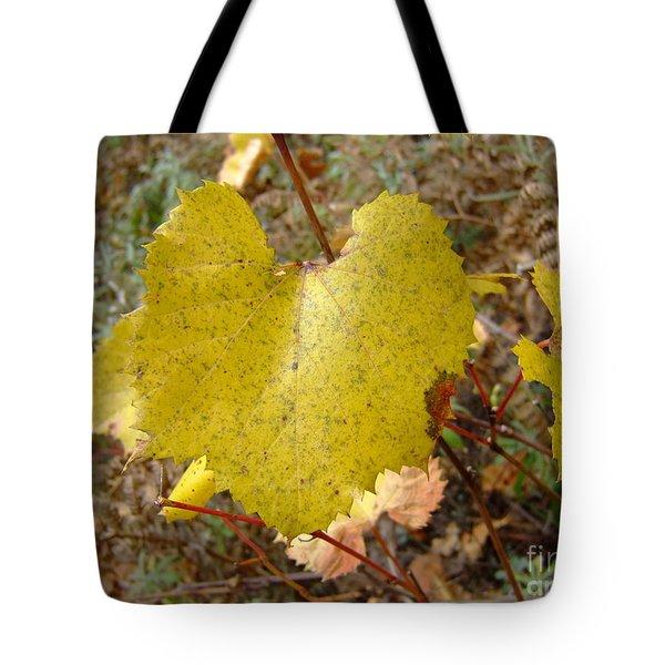 Fall Colors 6302 Tote Bag