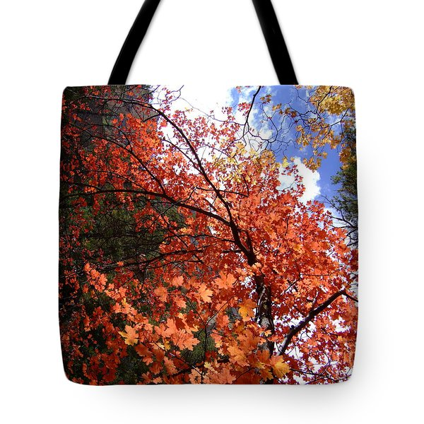 Fall Colors 6340 Tote Bag
