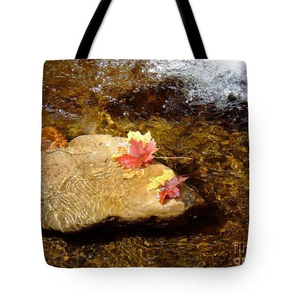 Fall Colors 6348 Tote Bag