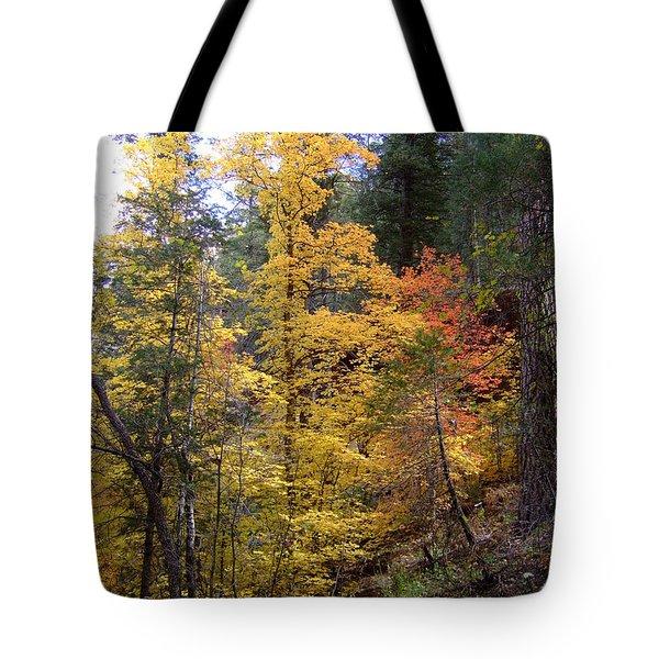 Fall Colors 6368 Tote Bag