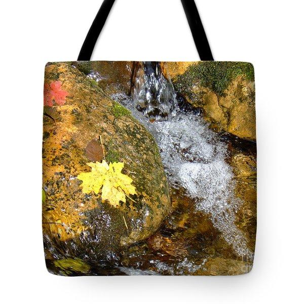 Fall Colors 6389 Tote Bag