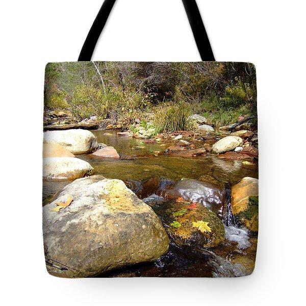 Fall Colors 6390 Tote Bag