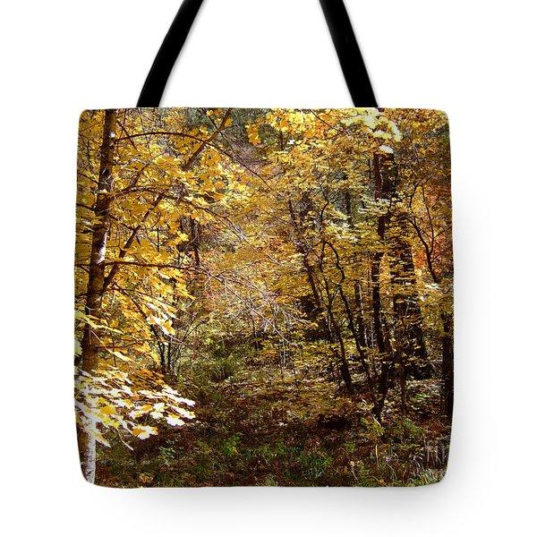 Fall Colors 6405 Tote Bag