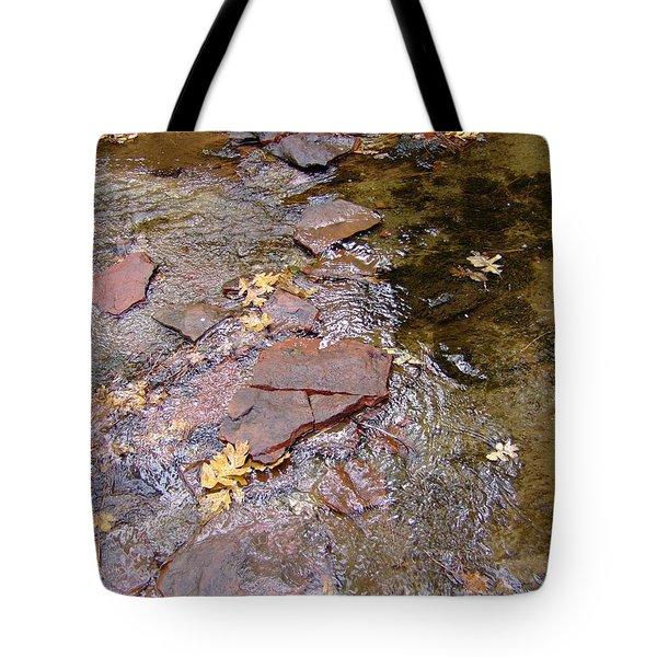 Fall Colors 6443 Tote Bag