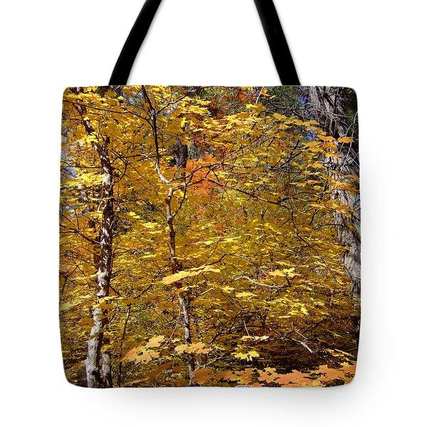 Fall Colors 6446 Tote Bag