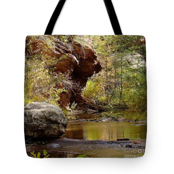 Fall Colors 6472-02 Tote Bag
