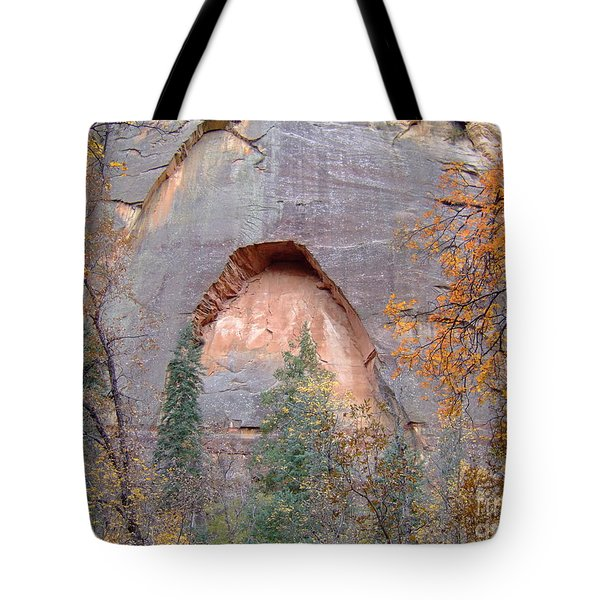 Fall Colors 6482 Tote Bag