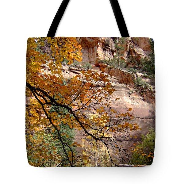 Fall Colors 6497 Tote Bag