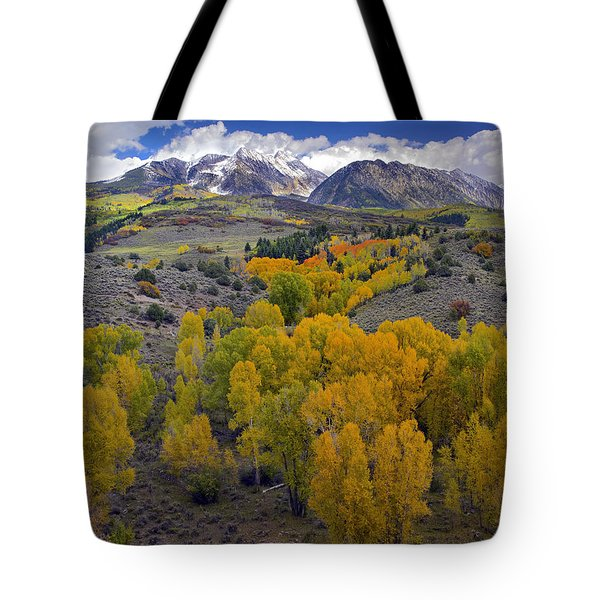 Fall Colors At Chair Mountain Colorado Tote Bag by Tim Fitzharris