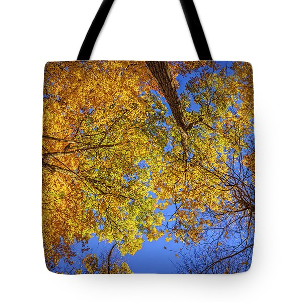 Fall Colors In The Sky  Tote Bag by LeeAnn McLaneGoetz McLaneGoetzStudioLLCcom