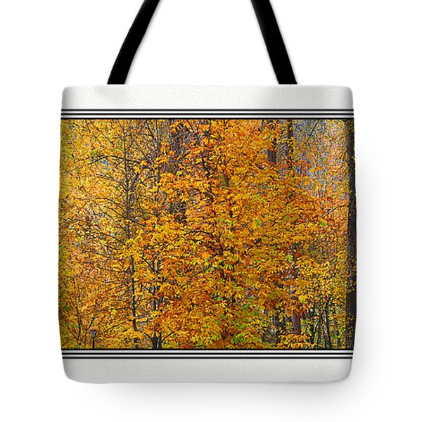 Fall Colors Tote Bag by John Bushnell
