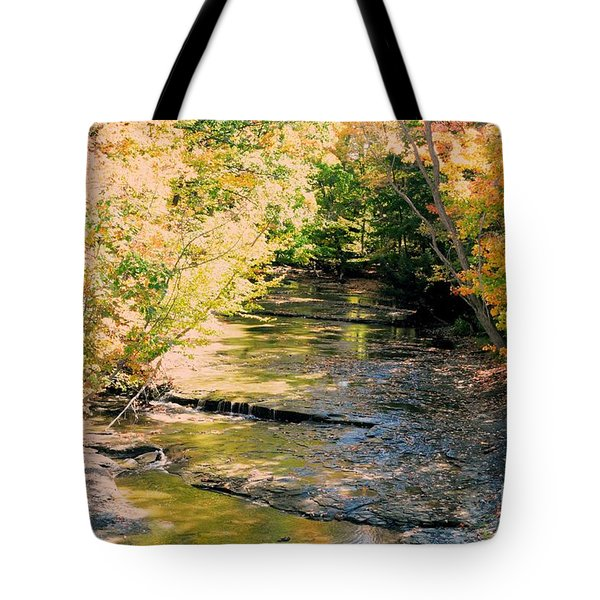 Fall Colors Tote Bag by Kathleen Struckle