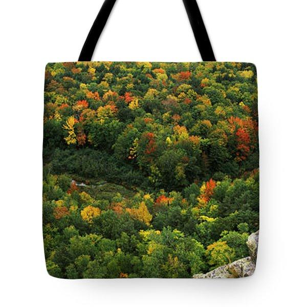 Fall Colors On Mountains Near Lake Tote Bag