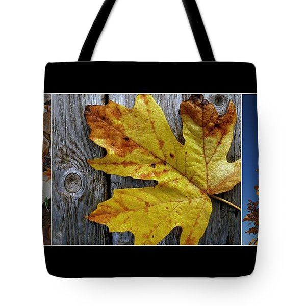 Fall Colors Triptych Tote Bag by Patricia Strand