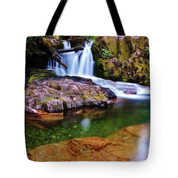 Fall Creek Oregon Tote Bag by Michael Cross