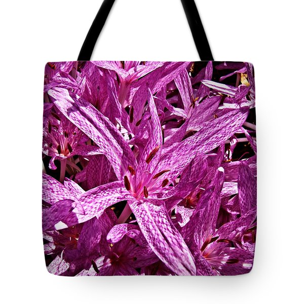 Tote Bag featuring the photograph Fall Crocus by Nick Kloepping