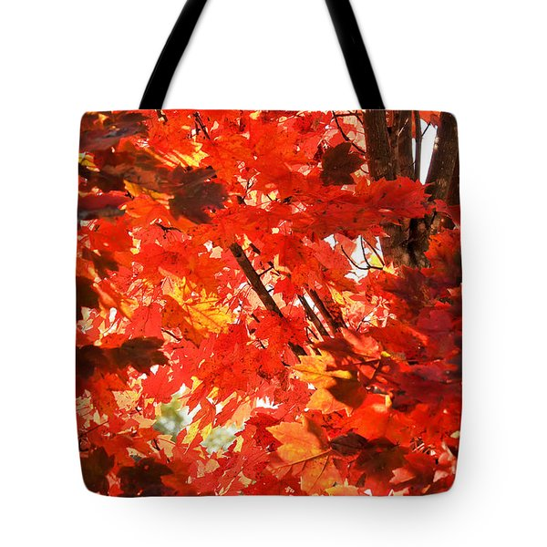 Tote Bag featuring the photograph Fall by David Perry Lawrence
