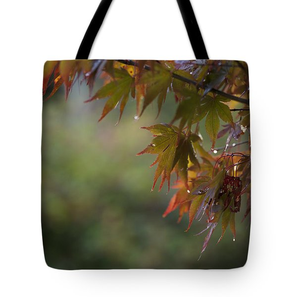 Fall Fantasy Tote Bag by Jane Eleanor Nicholas