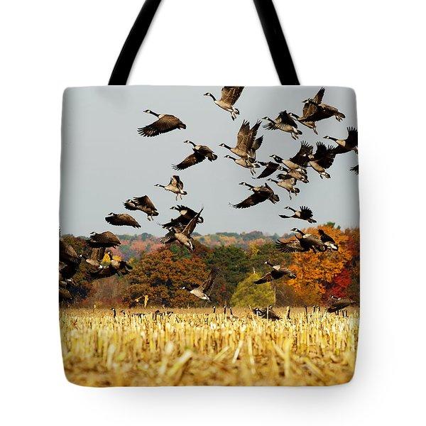 Fall Feast Tote Bag
