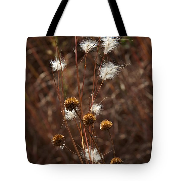 Fall Feathers Tote Bag by Jane Eleanor Nicholas