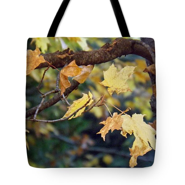 Fall Foilage Tote Bag