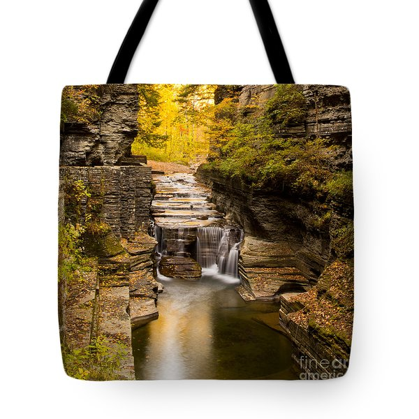 Fall Foliage At Dusk Treman Park Tote Bag