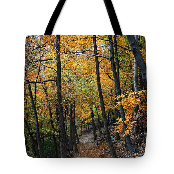 Fall Foliage Colors 03 Tote Bag