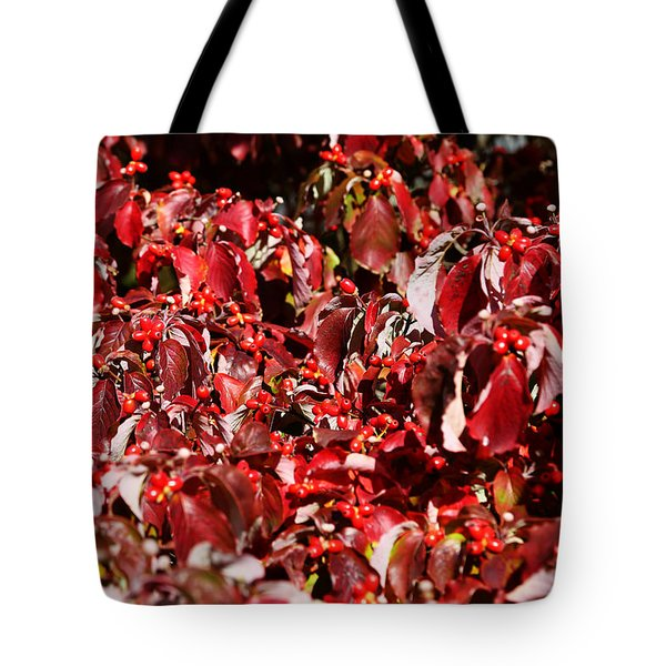 Fall Foliage Colors 08 Tote Bag