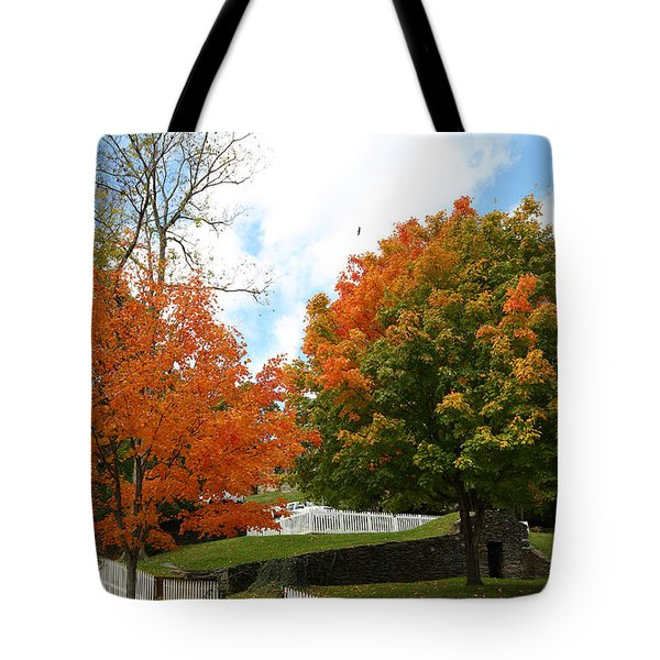 Fall Foliage Colors 09 Tote Bag