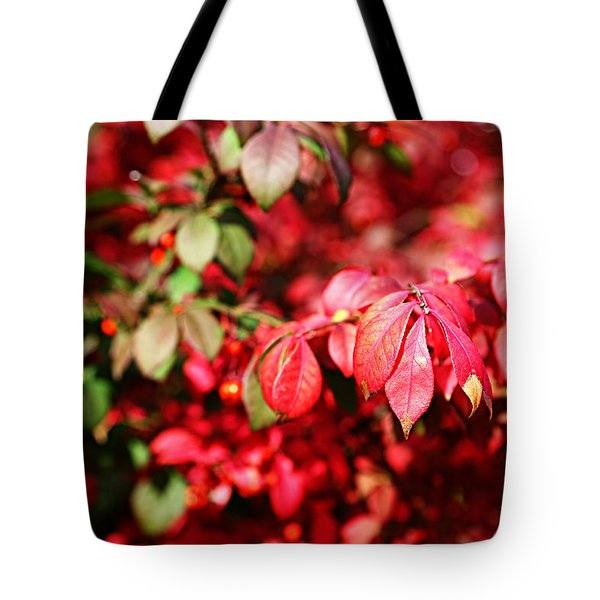 Fall Foliage Colors 10 Tote Bag