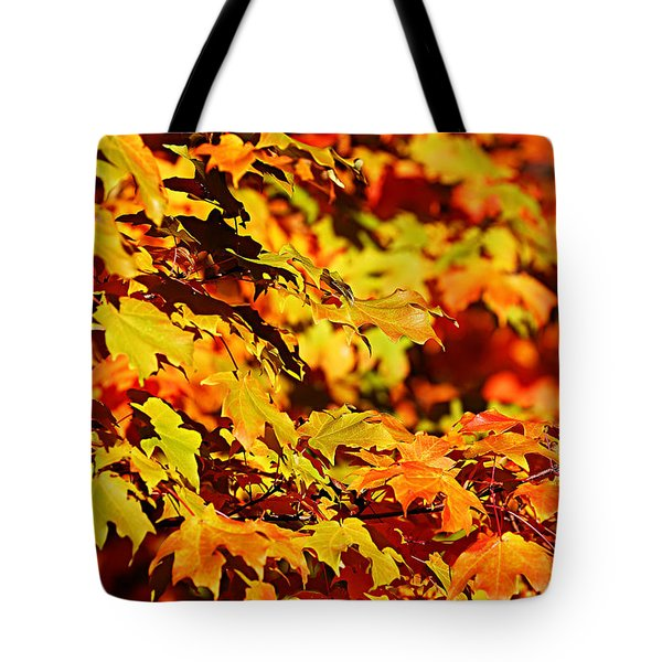 Fall Foliage Colors 13 Tote Bag