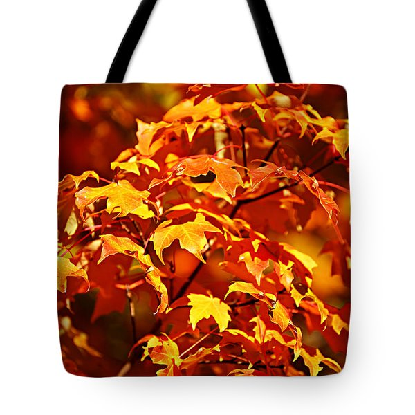 Fall Foliage Colors 14 Tote Bag