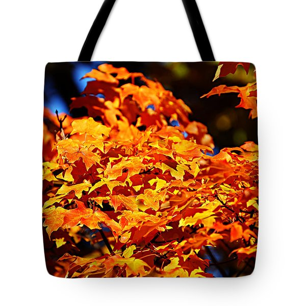 Fall Foliage Colors 16 Tote Bag