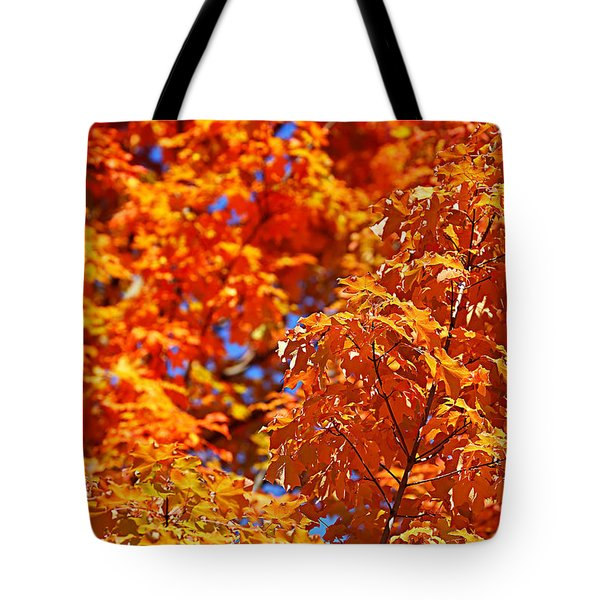Fall Foliage Colors 17 Tote Bag