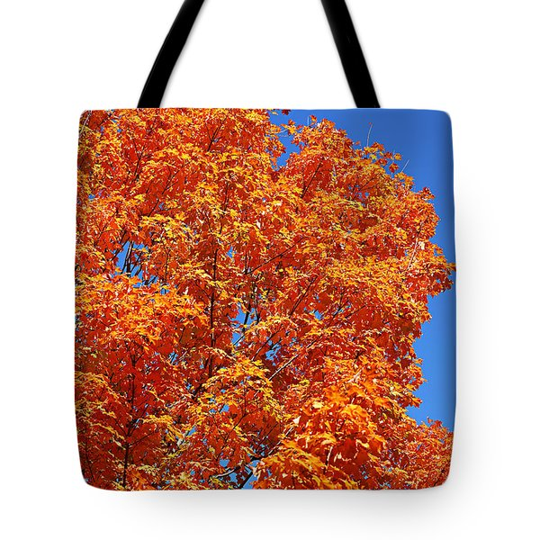 Fall Foliage Colors 18 Tote Bag