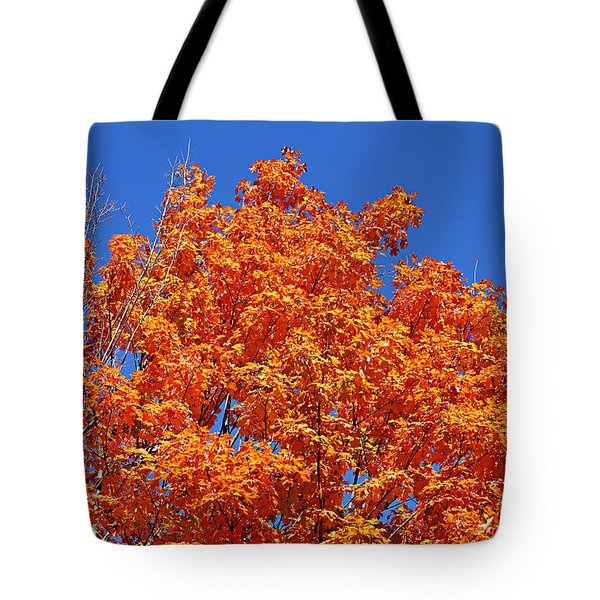 Fall Foliage Colors 19 Tote Bag