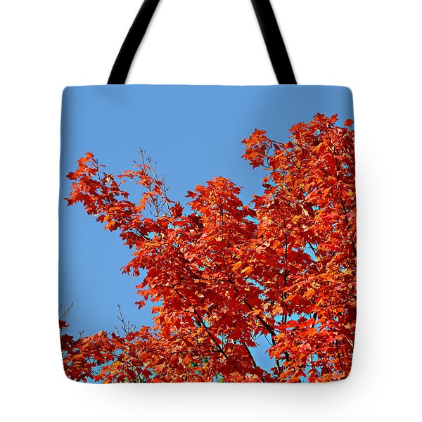 Fall Foliage Colors 20 Tote Bag