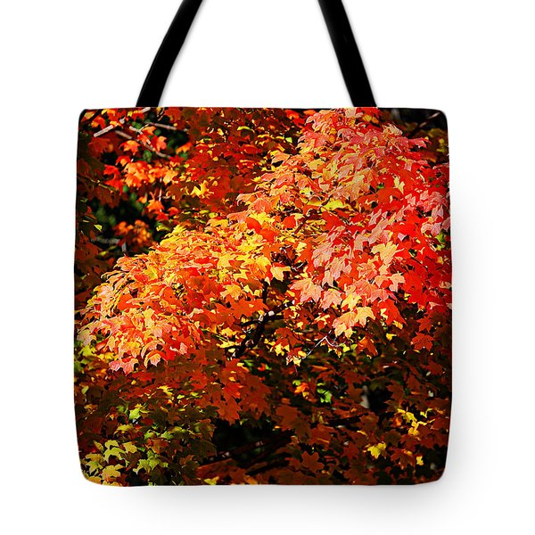 Fall Foliage Colors 21 Tote Bag