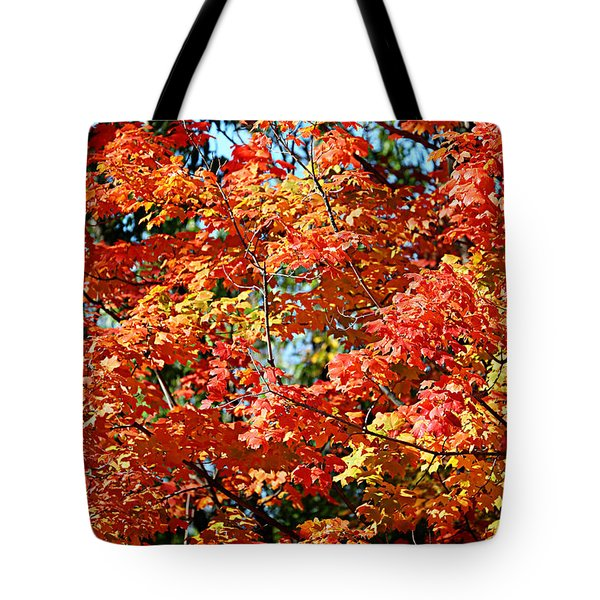 Fall Foliage Colors 22 Tote Bag