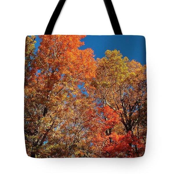 Fall Foliage Tote Bag by Patrick Shupert