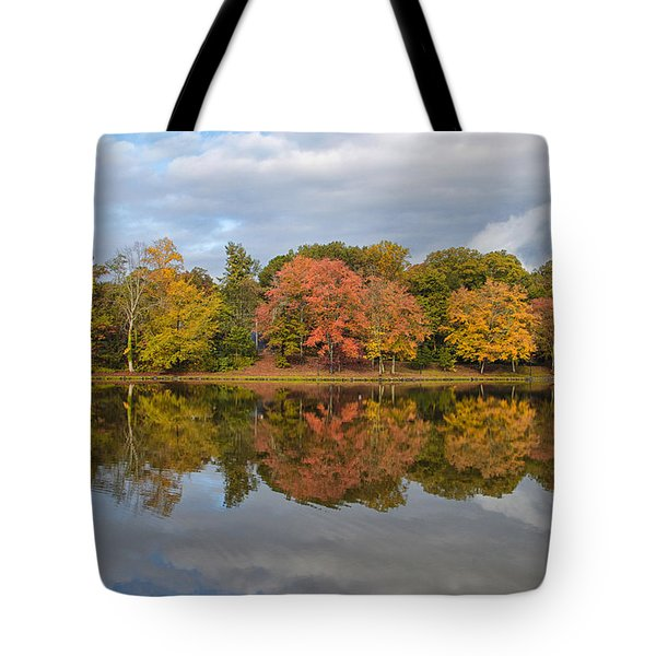 Tote Bag featuring the photograph Fall Foliage Symmetry by Ben Shields