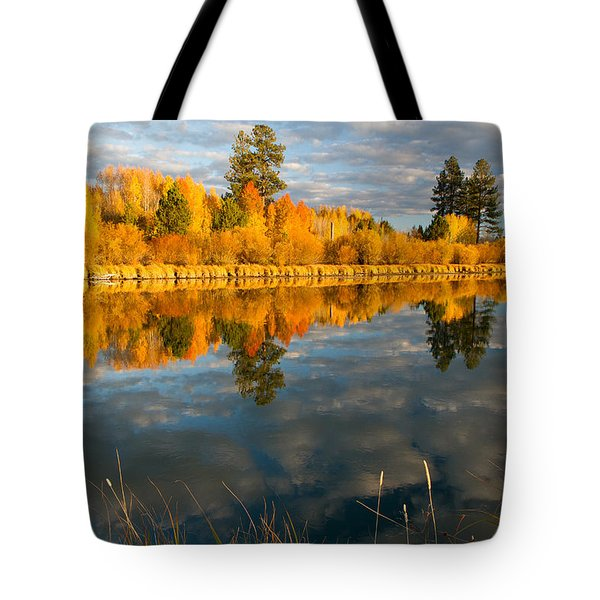 Tote Bag featuring the photograph Fall Fractal by Kevin Desrosiers