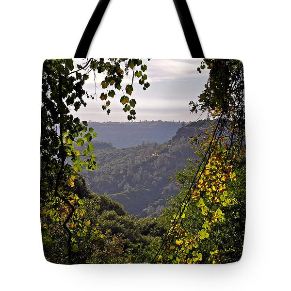 Fall Frames The Canyon Tote Bag