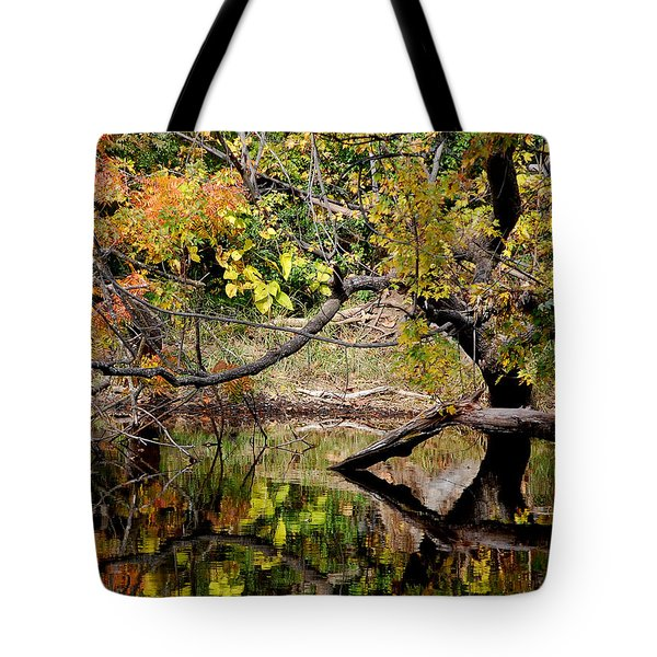 Fall From The Water Tote Bag by Holly Blunkall