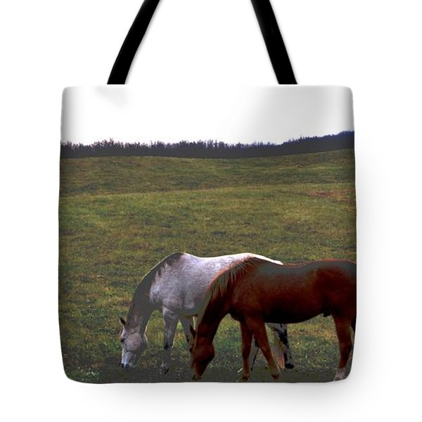 Fall Grazing Tote Bag by Carlee Ojeda