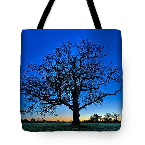 Fall Great Oak At Dawn Tote Bag