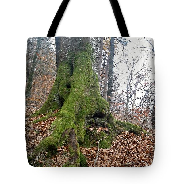Tote Bag featuring the photograph Fall In Burgdorf by Felicia Tica
