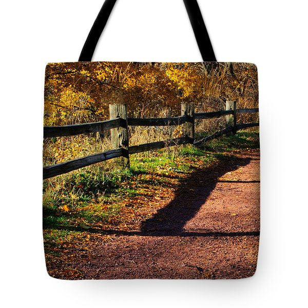 Fall In Chicago Tote Bag