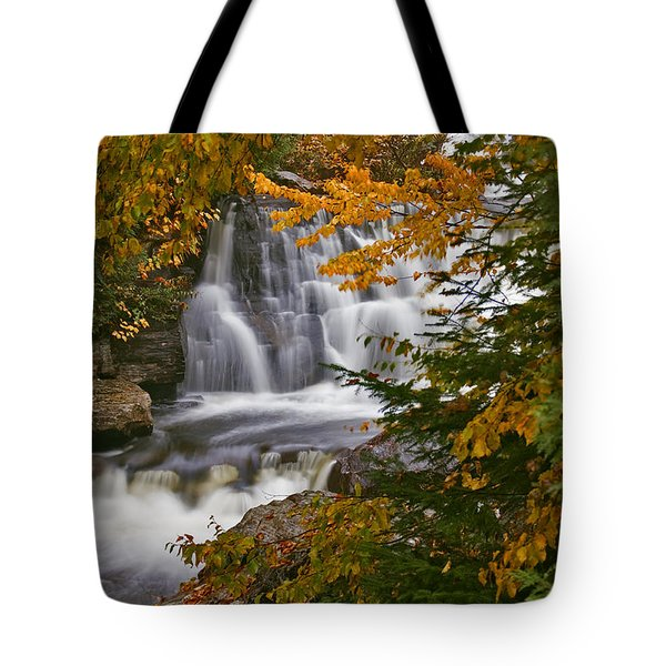 Fall In Fall - Chute Au Rats Tote Bag